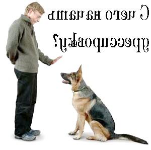 Дресирування собак самостійно