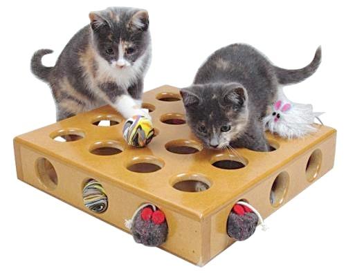 іграшки для кошеняти
