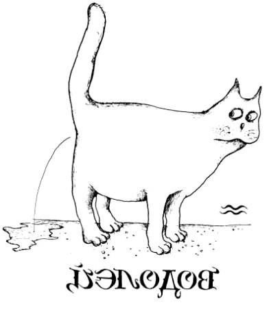 кішка вдалий