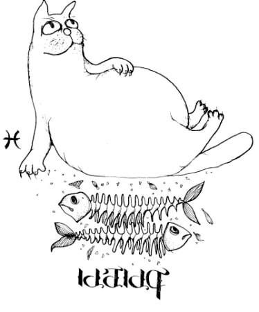 кішки риби
