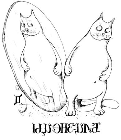 коти за знаком зодіаку близнюки