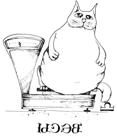 кішки ваги
