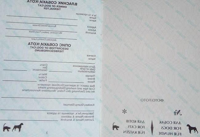 міжнародний ветеринарний паспорт для котів